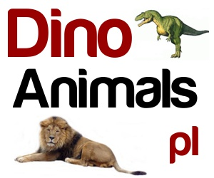 DinoAnimals.pl