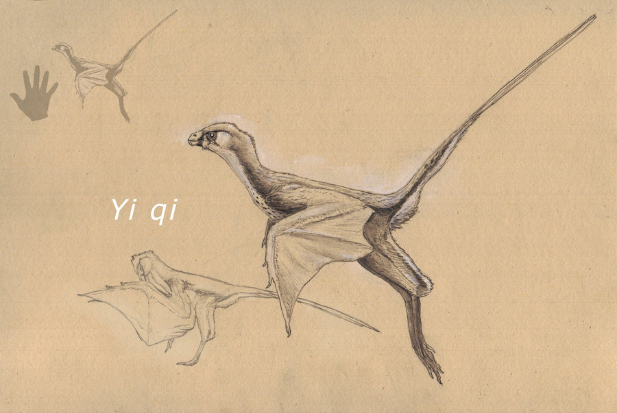 yi_qi_by_hyrotrioskjan-d8rjv0j