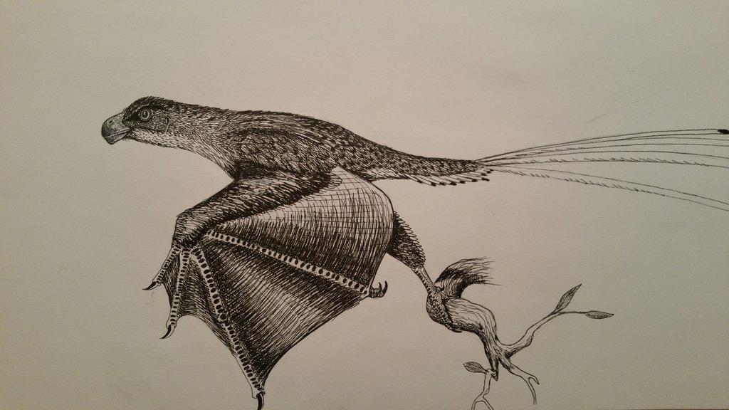 yi_qi_by_spinosaurus1-d8rnq2c