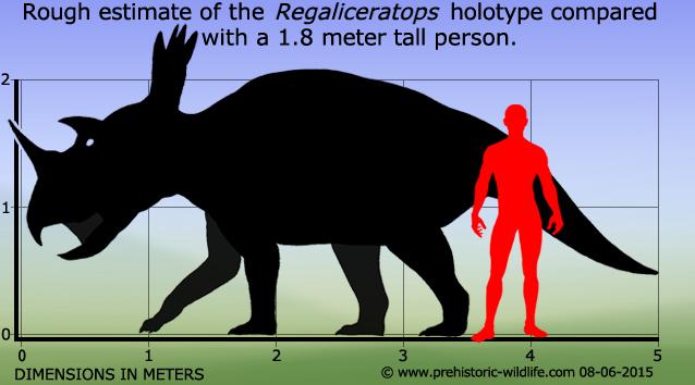 regaliceratops-size