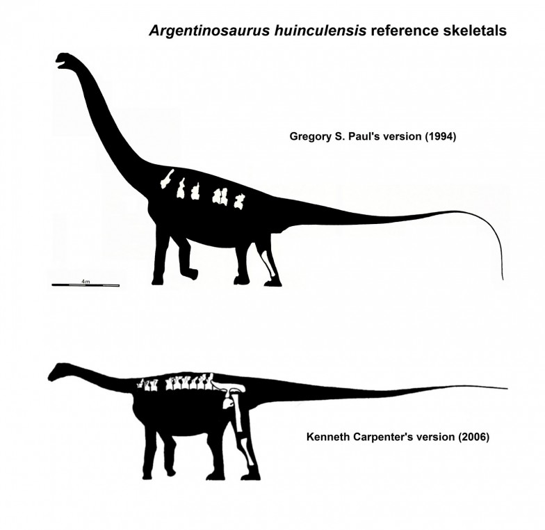 Argentinosaurus skeletals - Paul and Carpenter