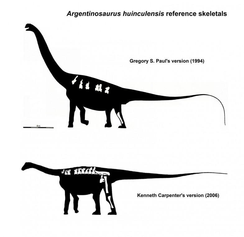 Seismosaurus vs argentinosaurus