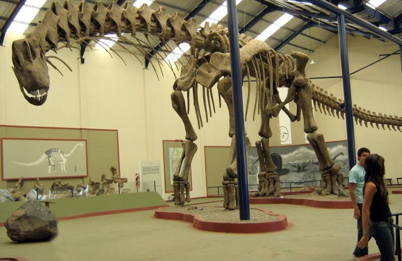 argentinosaurus_size_by_android65mar-d5zgw8s