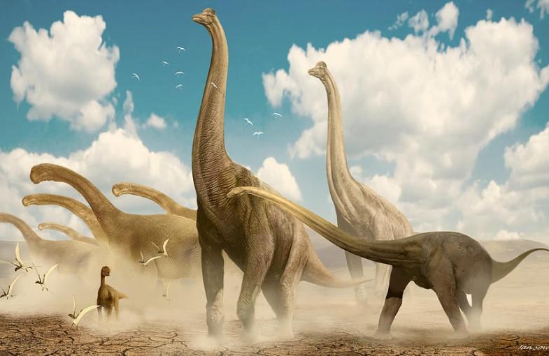 Salimosaurus