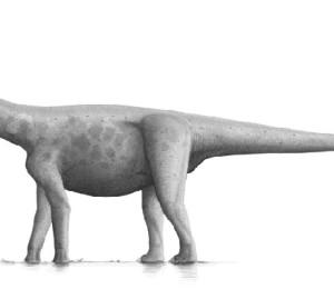 bruhathkayosaurus pic
