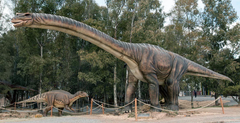 """Argentinosaurus - """"beton pośród kawałków drewna"""""""