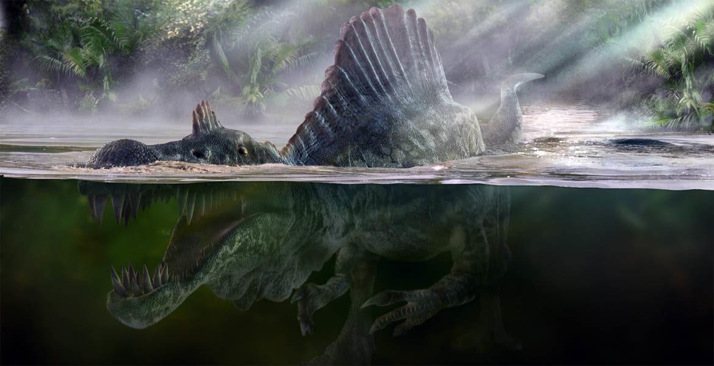 Wszystko co chcieliście wiedzieć o spinozaurze a baliście się zapytać