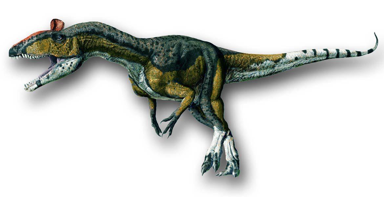 Cryolophosaurus - dominujący drapieżnik Antarktydy