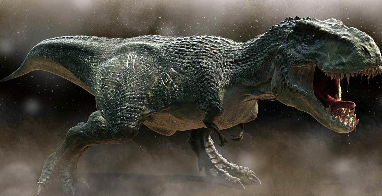 Wszystko co chcielibyście wiedzieć na temat Tyranozaurów