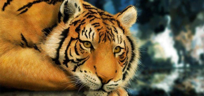 Tygrys kaspijski