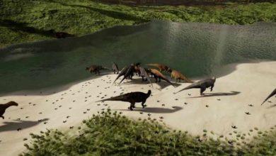 Photo of Adynomosaurus arcanus – nowy dinozaur