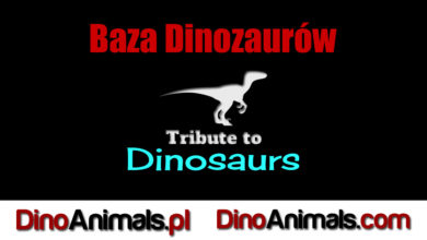 Photo of Baza wszystkich dinozaurów