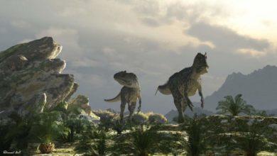 Photo of Karnozaury – największe drapieżniki wśród dinozaurów