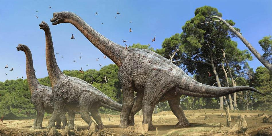 Photo of Brachiozaury – najwięksi roślinożercy