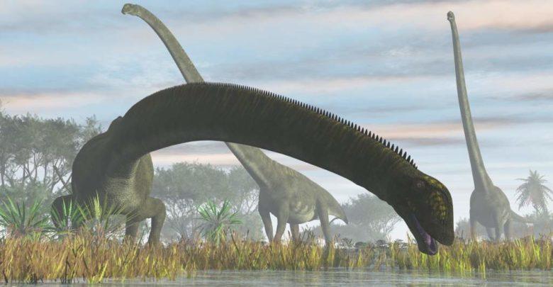 Dinozaury długie szyje