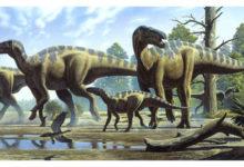 Photo of Ornitopody – największe dinozaury ptasionogie