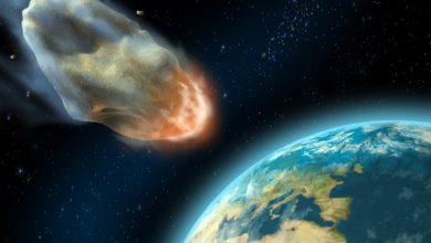 Photo of Zagłada dinozaurów. Dlaczego wyginęły?