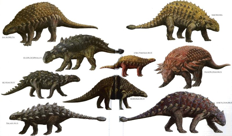 Pancerne dinozaury