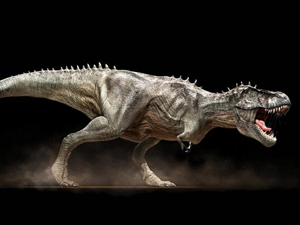 Tyranozaur (T. rex) - tyrannosaurus rex