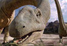 Photo of Argentynozaur (Argentinosaurus)