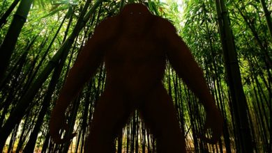 Photo of Gigantopitek (Gigantopithecus)