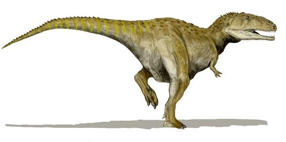 Mapuzaur (Mapusaurus).