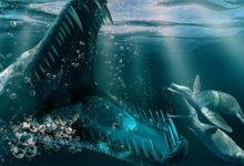 Photo of Kronozaur (Kronosaurus)