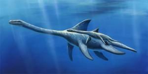 Plezjozaury (Plesiosauria).