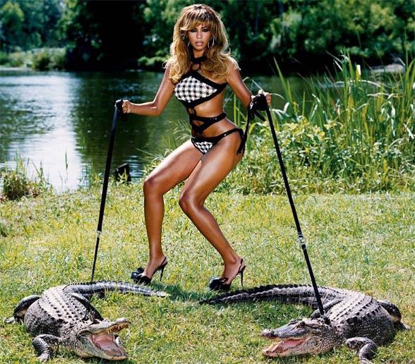 Aligatory amerykańskie...