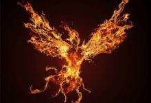 Photo of Mityczne ptaki – Feniks i Rok. Przyjaciel i wróg słońca
