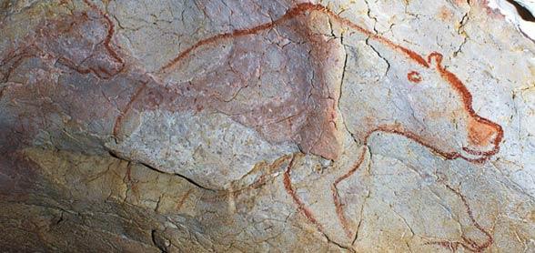 Niedźwiedź jaskiniowy (Ursus spelaeus)