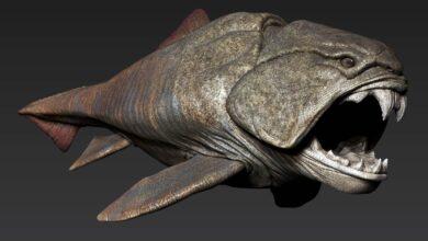 Photo of Dunkleosteus – prehistoryczny król oceanów