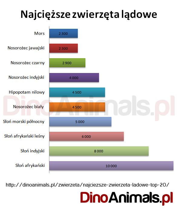 Najcięższe zwierzęta lądowe TOP10 - masa podana w kg.