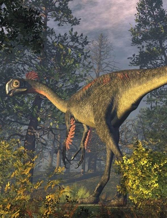 Gigantoraptor (Gigantoraptor erlianensis).