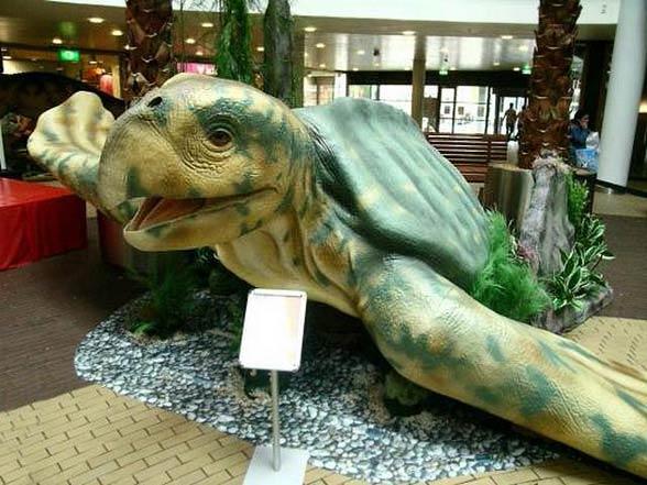 Żółw Archelon ischyros.