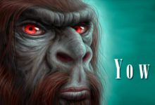 Photo of Yowie – australijski Yeti