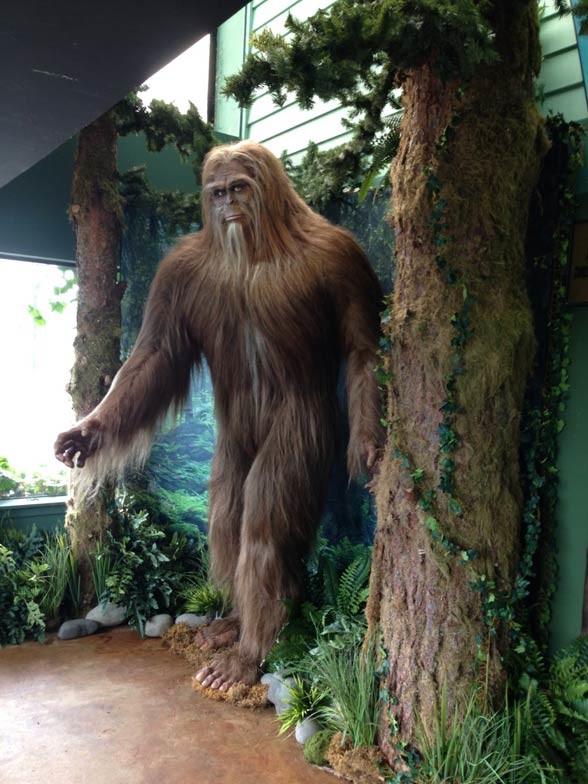 Wielka stopa, Bigfoot
