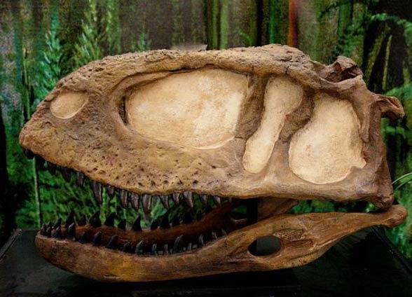 Abelizaur (Abelisaurus).