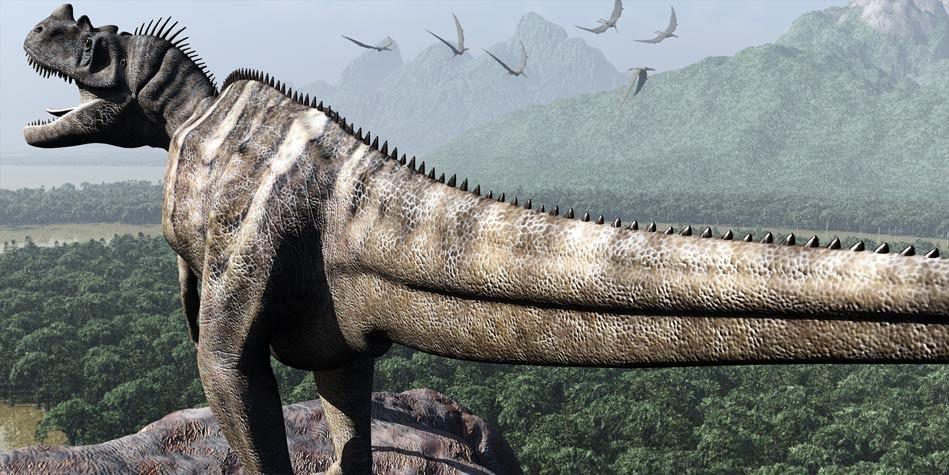 Dinoanimals Pl: Ceratozaur (Ceratosaurus)
