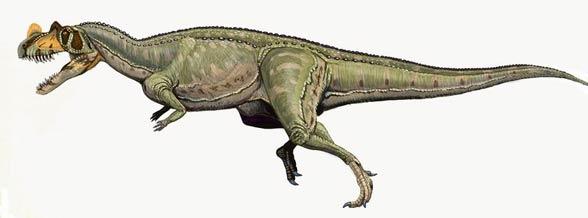 Ceratozaur (Ceratosaurus)