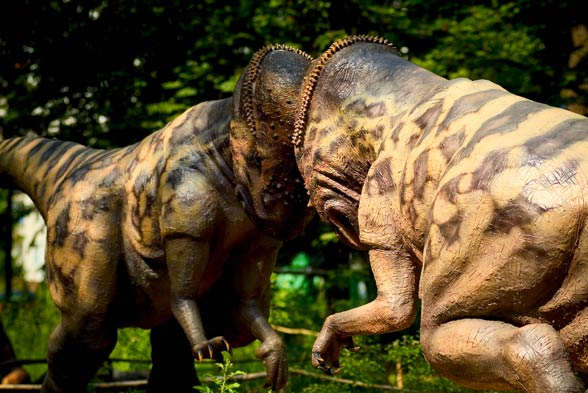 Pachycefalozaur (Pachycephalosaurus)