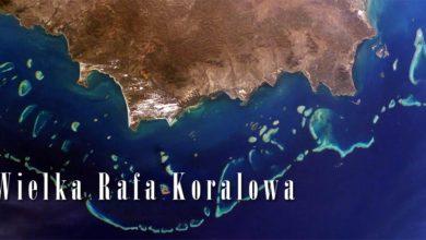 Photo of Wielka Rafa Koralowa