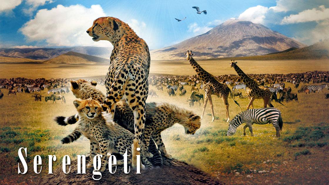 Dinoanimals Pl: Park Narodowy Serengeti