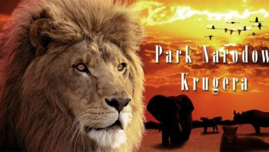 Photo of Park Narodowy Krugera