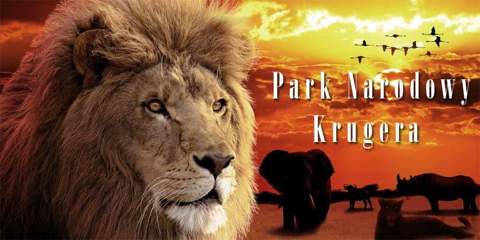 Dinoanimals Pl: Park Narodowy Krugera
