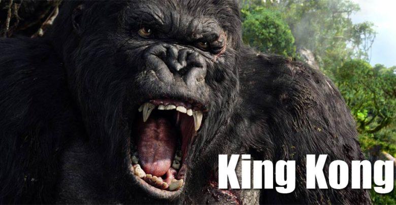 Photo of King Kong – ósmy cud świata