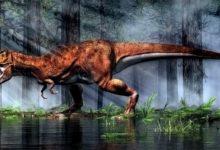 Photo of Król wśród dinozaurów jest tylko jeden!