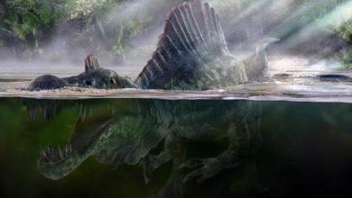 Photo of Wszystko co chcieliście wiedzieć o spinozaurze