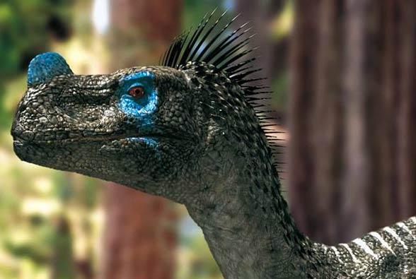 Ornitholestes hermanni)