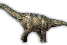 Photo of Największe tytanozaury – ile ważyły?